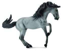 Lusitano Stallion Grey